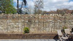 Climbing Clematis, Garden Spaces, Trellis, Patio, Wall, Outdoor Decor, Terrace, Courtyards