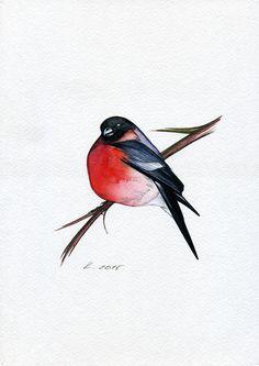 Bird, bullfinch,red, Illustration,Watercolor Original Painting Art, Quick sketch #IllustrationArt   Natalia Komisarova   NatalieStorePainting     You can also find me on:    EBAY: http://www.ebay.com/usr/natalie_komisarova.art    ETSY: https://www.etsy.com/shop/NatalieStorePainting    FACEBOOK: https://www.facebook.com/komisarova.art    #NataliePaintings #Natalie #Artist #Illustration  #Bird