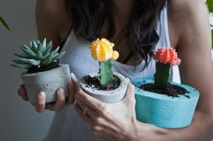 UO DIY: Cement Planters - Urban Outfitters - Blog