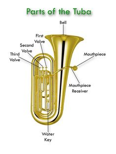 Brass Instruments - Welcome to the Glades Middle School Bands Website! Band Website, Band Rooms, Middle School Music, Music Worksheets, Music Activities, Music Images, Elementary Music, Music Classroom, Teaching Music