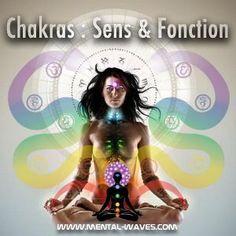 Améliorez votre vie quotidienne avec la maîtrise de vos 7 différents chakras grâce à la méditation. Apprenez en plus que le rôle de chacun de ces chakras.