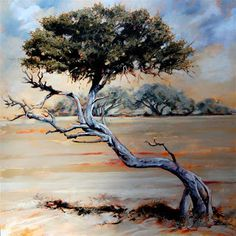 """Terry Kobus - """"Karoo Sentry"""" Oil on Canvas 900 x Tree Paintings, South African Artists, Tree Art, Oil On Canvas, Survival, Originals, Gallery, Drawings, Artwork"""