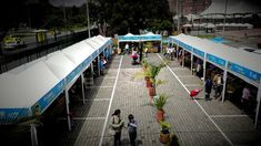 GRAN MERCADO CAMPESINO Fair Grounds, World, Youtube, Travel, Viajes, Trips, The World, Youtubers, Tourism
