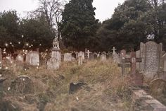 I have a thing for cemeteries.