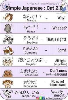 Basic foods in Japanese with Kanji and Hiragana an. Basic Japanese Words, Japanese Phrases, Study Japanese, Japanese Culture, Learning Japanese, Japanese Cat, Japanese Things, Japanese Kanji, Learning Italian