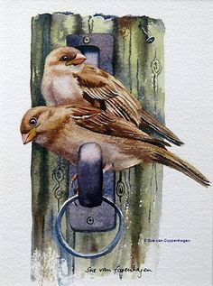 Sparrows Bird Painting by artist Sue van Coppenhagen