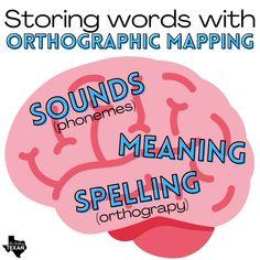 Dyslexia Teaching, Teaching Reading, Teaching Ideas, I Love School, Middle School Reading, Reading Specialist, First Grade, Grade 1, Phonemic Awareness