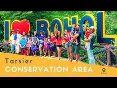 Tarsier Conservation Area in Bilar (Bohol, Philippines) - YouTube Bohol Philippines, Primates, Conservation, More Fun, Fun Facts, Youtube, Primate, Funny Facts, Youtubers