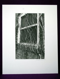 Window in Vines by TheGardeniaProject on Etsy