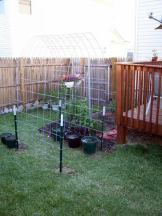 This would be extremely easy to make. It could go over a path to a secret sitting area in your yard/flower garden where clematis could grow, or you could add it to your garden area and let cucumbers, squash, etc. Cattle Panel Trellis, Arch Trellis, Cattle Panels, Diy Trellis, Garden Trellis, Bean Trellis, Trellis Ideas, Clematis, Cucumber Trellis