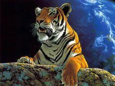 Tiger Tiger Tiger Tiger Tiger