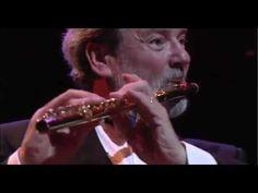 Flight Of The Bumble Bee - Rimsky-Korsakov