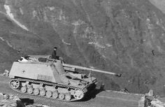 Panzerjager Nashorn/Hornisse German tank destroyer with the Long World Of Tanks, The Beast, Ww2 Panzer, Tank Armor, Military Armor, Tiger Tank, Tank Destroyer, Armored Fighting Vehicle, Military Pictures