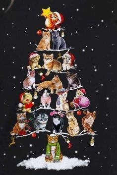 Would make a very cute card Christmas Scenes, Christmas Animals, Christmas Cats, Christmas Wishes, Christmas Pictures, Christmas Greetings, Vintage Christmas, Merry Christmas, Xmas