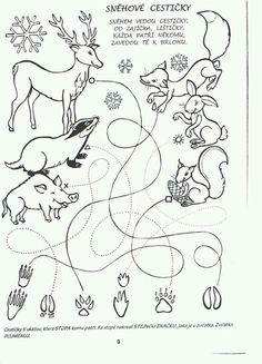 Bear Coloring Pages, Printable Coloring Pages, Coloring Pages For Kids, Free Coloring, Coloring Books, Preschool Worksheets, Preschool Activities, Educational Activities, Outdoor Education