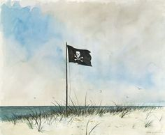 Pirate flag on the shore