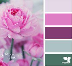 Blooming Pink by Design Seeds Colour Pallette, Color Palate, Colour Schemes, Color Combos, Color Patterns, Color Tones, Design Seeds, Pantone, Coordination Des Couleurs