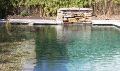 Schwimmteich, Naturpool, Biotop - garten-reinisch.at Outdoor Decor, Water Pond, Swimming