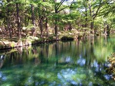 Wimberley Blue Hole Regional Park in Wimberley, TX