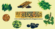 REMEDIOS NATURALES PARA LA DIABETES