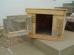 43 Best Coon Dog Dog Box Images On Pinterest Dog Box For Truck