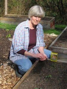 How to go Non-GMO in the garden