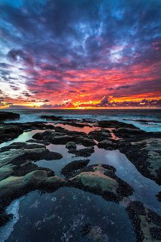 Cape Arago Tidepools, Coos Bay, Oregon by Robert Bynum