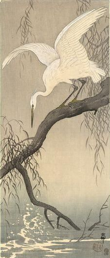 "Japanese Art Print ""White Heron on Tree Branch"" by Ohara Koson, woodblock print reproduction, fine a - Etsy - Neu Pin Japanese Painting, Chinese Painting, Chinese Art, Ohara Koson, Art Chinois, Art Asiatique, Japanese Prints, Japan Art, Woodblock Print"