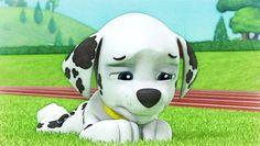 Marshall - Photomania by mollymolata on DeviantArt Cloverfield 2, Navy Exchange, Paw Patrol Pups, Animated Cartoons, Snoopy, Animation, Deviantart, Adventure, Baron