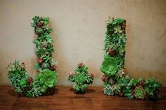 Many craft and home stores sell wooden or cardboard letters that you can hollow out and add flowers or other plants. Use it to make your initials or a short welcome message. 10 Unconventional Ways to Display Plants