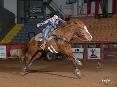 To ride a horse is to fly! Barrel Racing Horses, Horse Racing, Bud Light, Wild West, Country Girls, Rodeo, Super Cute, Animals, Animales