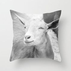 Update Your Space with These Totally Awesome Pillows - Broke and Chic