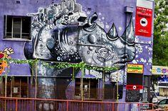 Rhino Room. Artist: M tron, 13 Frome Street, Adelaide. Photo: Trentini Priori.