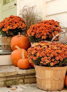 Fall porch decor ideas - pumpkins and potted mums #porches #falldecor #falldecorating