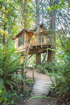Image: Forest treehouse in Preston, Washington. (© Blend Images/Rex Features)