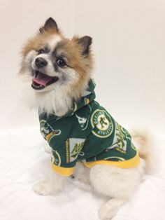 d460219624e Oakland A's Pet Hoodie, Dog Sweater, for Small Breeds by LizzyAndMeekoShop  on Etsy