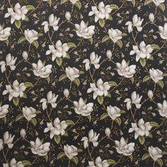 Lilium Ebony Lilium Martagon, Lavender Blossoms, Lavandula, Exotic Beauties, White Lilies, Wedding Stage, Flower Seeds, Bonsai, Color Pop