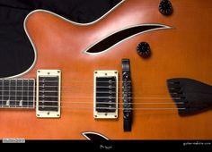 Procházka Custom Guitars B-type