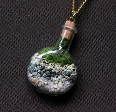 Love this Terrarium Necklace!