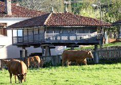 asturias paraiso natural by sayago22, via Flickr