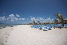 A special day at the beach – enjoy a white sand beach, turquoise water, an all inclusive island lunch at Grand Turk's premier beach location.