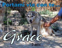 #portamiviaconte - Grace 3 anni