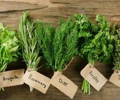 Scopri come coltivare erbe aromatiche in casa, come raccoglierle e conservarle. Belle, buone e profumate... cosa aspetti?