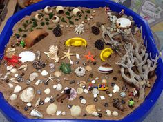Beach themed small world. We've created a 'low tide' beach where the miniature people can go rock pooling, crabbing, shell collecting etc. A nice change to the normal 'sand sea' beach small world. Eyfs Activities, Nursery Activities, Activities For Kids, Pirate Activities, Outdoor Activities, Tuff Spot, Ocean Themes, Beach Themes, Sharing A Shell