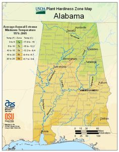 Alabama plant hardiness zone map and when to plant seeds Gardening Zone Map, Planting Zones Map, Vegetable Planting Calendar, Plant Zones, Organic Gardening, Gardening Blogs, When To Plant Vegetables, Planting Vegetables, Backyard Vegetable Gardens