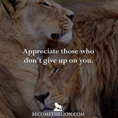 No matter how tough it gets, never forget those who didn't give up on you. Leo Quotes, Life Quotes Love, Badass Quotes, Wisdom Quotes, True Quotes, Inspirational Quotes About Success, Meaningful Quotes, Positive Quotes, Word Up