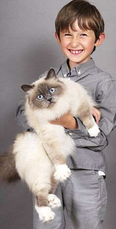 Such a touching story of how the human-animal bond between this boy and his cat helped him overcome selective mutism.