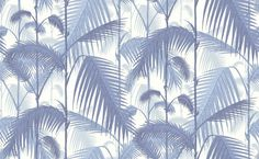 Cole & Son - Contemporary Restyled - Palm Jungle 95/1005