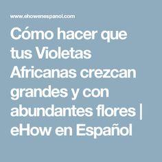 Cómo hacer que tus Violetas Africanas crezcan grandes y con abundantes flores | eHow en Español