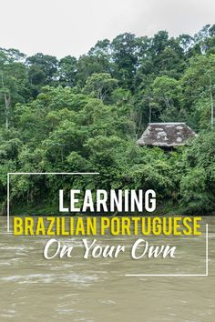 I love studying languages, so I figured why not try and learn Brazilian Portuguese? Learn To Speak Portuguese, Learn Brazilian Portuguese, Portuguese Lessons, Rio Grande Do Norte, Travel Around The World, Around The Worlds, Portuguese Brazil, Portuguese Language, Brazil Travel